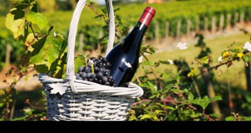 grands-vins-bourgogne.jpg