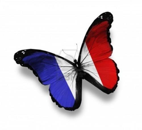 12676243-papillon-drapeau-francais-isole-sur-blanc.jpg